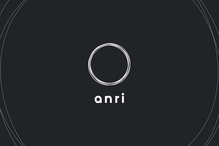 ANRI IDENTITY AND WEBSITE