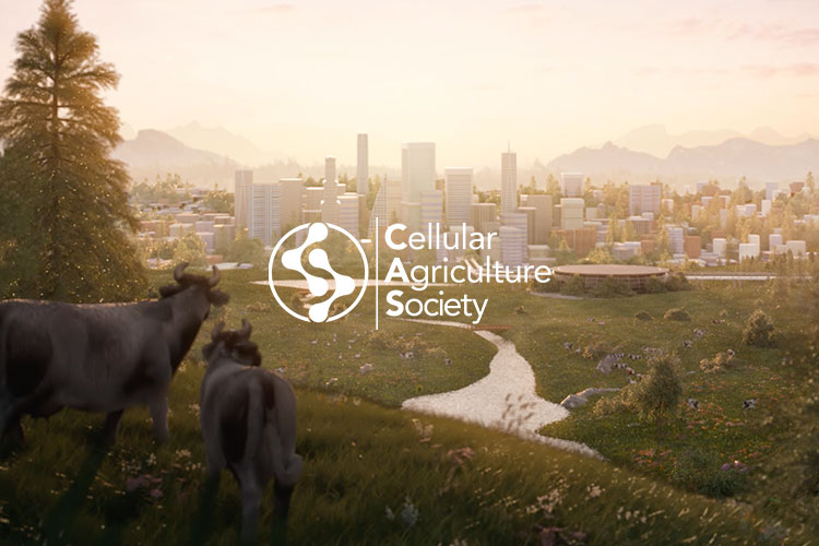 CELLULAR AGRICULTURE SOCIETY<br /> WEBSITE REDESIGN